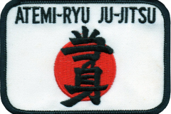 Atemi Patch (Medium)